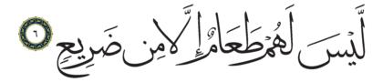 Al-Ghashiyah 88, 6