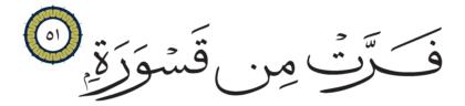 Al-Muddaththir 74, 51