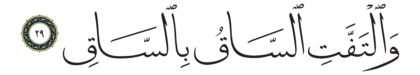 Al-Qiyâmah 75, 29