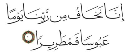 Al-Insan 76, 10