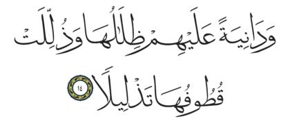 Al-Insan 76, 14