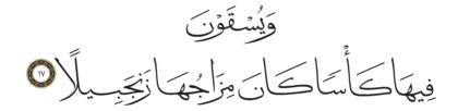 Al-Insan 76, 17