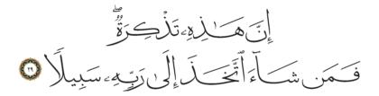 Al-Insan 76, 29