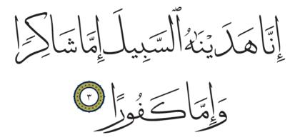 Al-Insan 76, 3