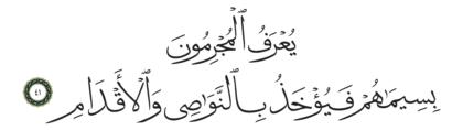 41 ،55 الرحمن