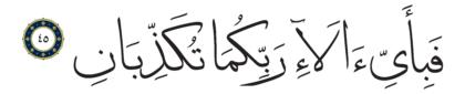 45 ،55 الرحمن