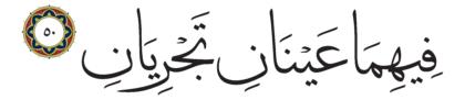 50 ،55 الرحمن