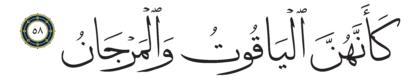 58 ،55 الرحمن