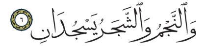 6 ،55 الرحمن