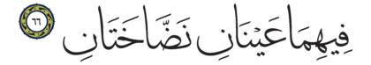66 ،55 الرحمن