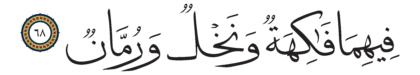 68 ،55 الرحمن