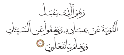 Al-Shura 42, 25