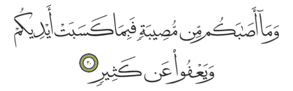 Al-Shura 42, 30